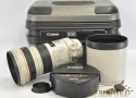EF 300mm F2.8 L IS USM